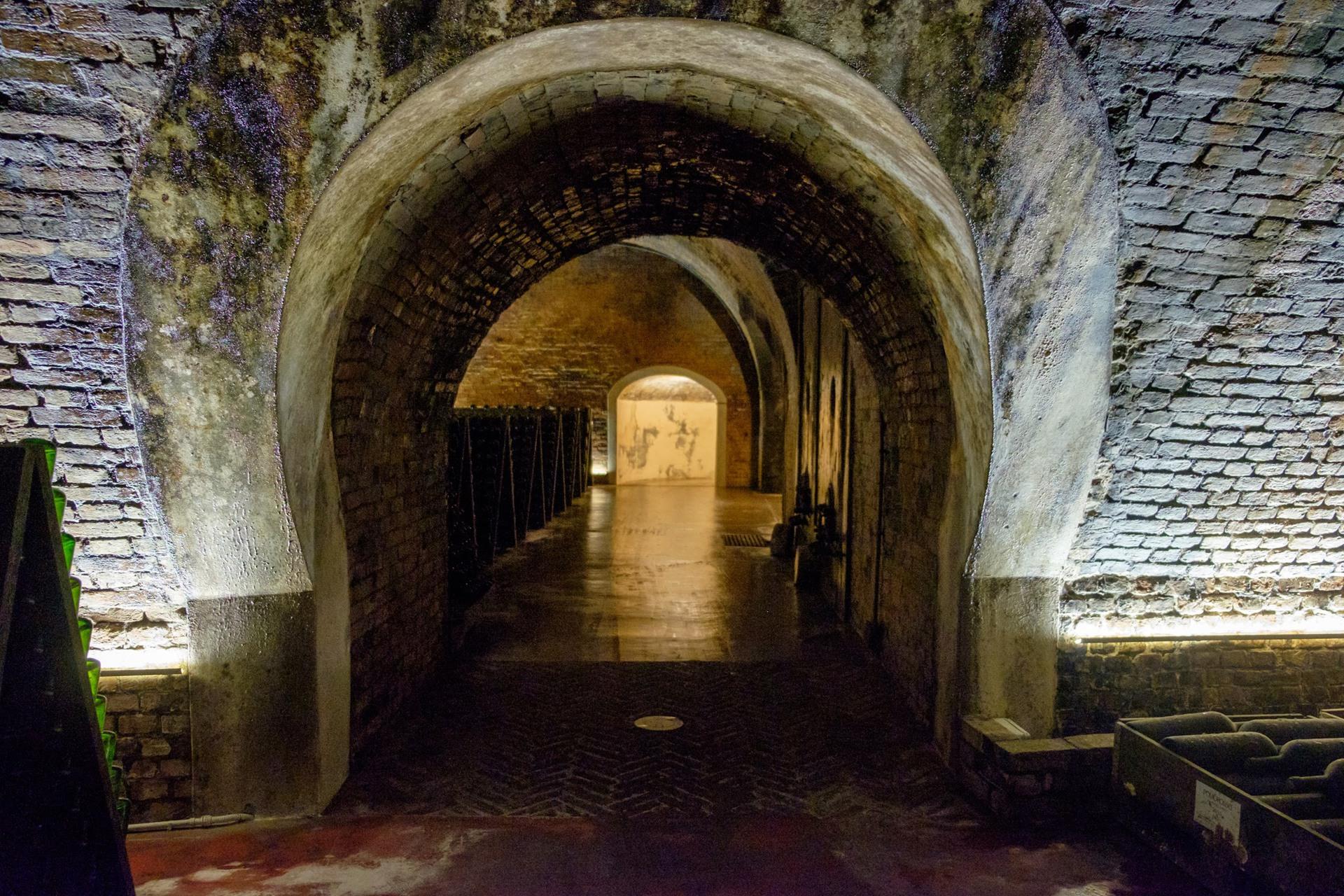 Canelli Cattedrali del vino