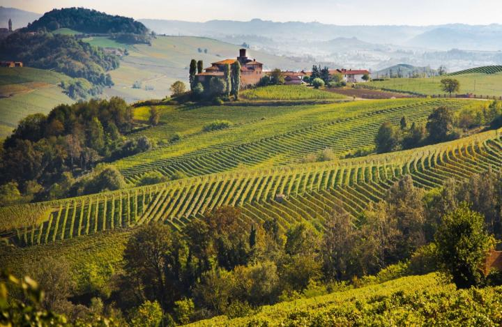 3 Days Minibus tours in the Langhe, Roero and Monferrato